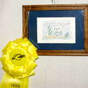 3rd place - Portraits/Animals